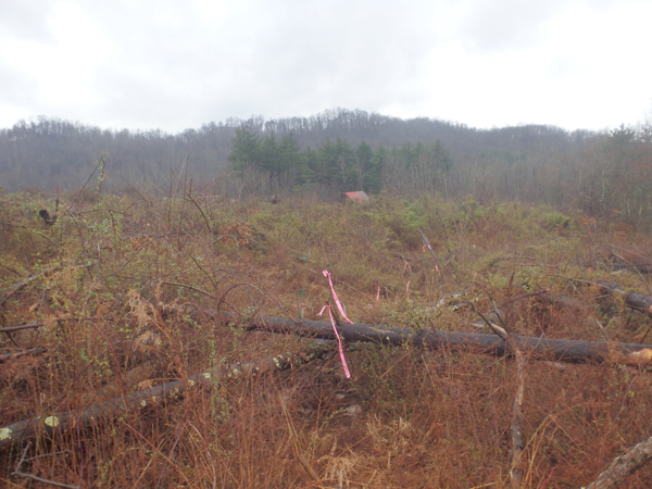 Permitting project in Noble County, Ohio