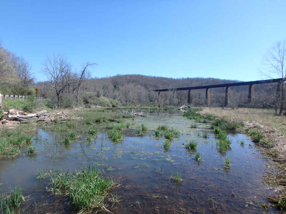 Restoration Project at the Pleasant Creek Wildlife Management Area