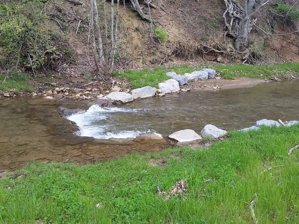 Stream Restoration Project