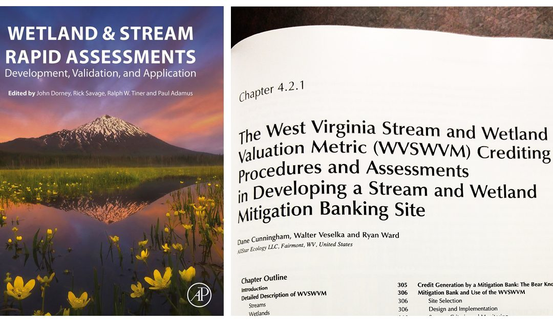 AllStar's Mitigation Expertise Featured in Professional Book: Wetland & Stream Rapid Assessments